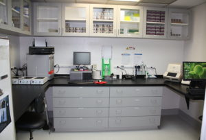 Functional Lab for PCR analysis features Chem Surf laminates for chemical resistance, efficient storage space and drawers, and see through upper cabinets for fast retrieval of items. Perfect space for small labs performing up to 30 samples per day.